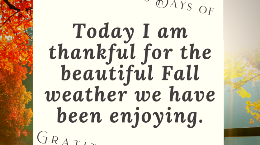 Gratitude Challenge - Today I'm thankful for the beautiful weather we have been enjoying!